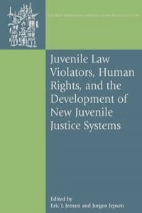 an introduction to the issues in the juvenile justice system in the united states Juvenile court: an overview the juvenile justice system is separate from the criminal justice system in most states, the maximum age for juvenile court is 17.